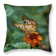 Butterfly Wings Of Sun Light Throw Pillow