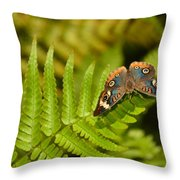 Butterfly With Eyes  Throw Pillow
