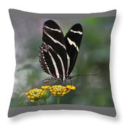 Butterly Throw Pillow
