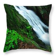 Buttermilk Falls Gorge Throw Pillow