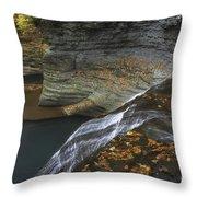 Buttermilk Falls In Autumn I Throw Pillow