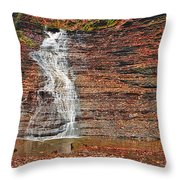 Buttermilk Waterfall Throw Pillow by Marcia Colelli
