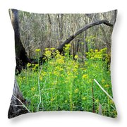 Butterweed Florida Wildflower Throw Pillow