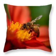 Buzz Is The Word Throw Pillow