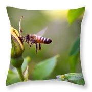Buzz The Bee Throw Pillow