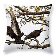 Buzzard Friends IIi Throw Pillow