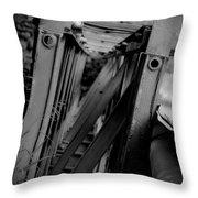 Bw Bridge Throw Pillow