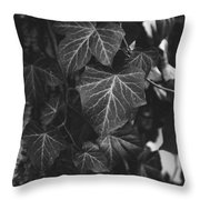 Bw Ivy Throw Pillow