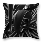 Bw Variegated Agave Throw Pillow
