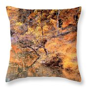 By The Bank Of The Golden Forest Throw Pillow