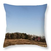 By The Pond Throw Pillow