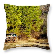 By The Roadside Throw Pillow