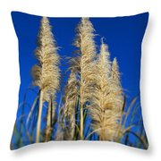 By The Sea By Diana Sainz Throw Pillow
