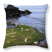 By The Shoreline Throw Pillow