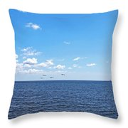 Bye Bye Birdies Panoramic Throw Pillow