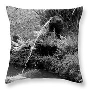 Byodo In Temple 2 Throw Pillow