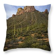 Byous Butte Throw Pillow
