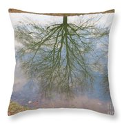 C And O Canal Tree Reflection Throw Pillow