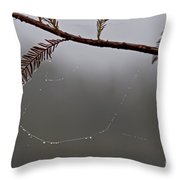 C Is For Cypress Throw Pillow