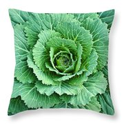 Cabbage Leaves Throw Pillow