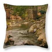 Cabin By The Creek Throw Pillow