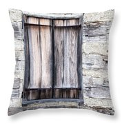 Cabin Fever Throw Pillow by Dale Kincaid