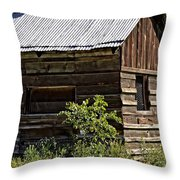 Cabin In The Wilderness Throw Pillow