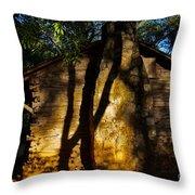 Cabin Shadows Throw Pillow