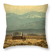 Cabin With Mountain Views Throw Pillow
