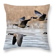 Cackling Geese Flying Throw Pillow