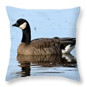 Cackling Goose In Water Throw Pillow