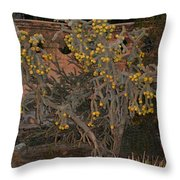 Cacti Along The Garden Wall Throw Pillow