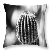 Cacti B And W  Throw Pillow