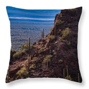 Cacti Covered Rock At Tucson Mountains Throw Pillow
