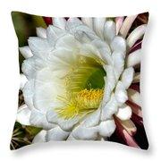 Cacti Flora Throw Pillow