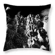 Cactus 1 Bw Throw Pillow