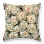 Cactus 35 Throw Pillow