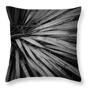 Cactus 5250 Throw Pillow