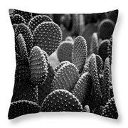 Cactus 5252 Throw Pillow