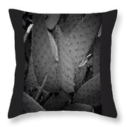 Cactus 5256 Throw Pillow