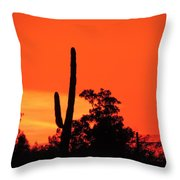 Cactus Against A Blazing Sunset Throw Pillow