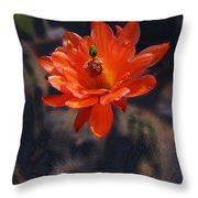Cactus Blossom 1 Throw Pillow