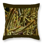 Cactus Cactus Throw Pillow