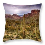 Cactus Canyon  Throw Pillow