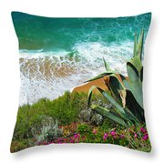 Cactus Coast Throw Pillow