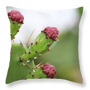 Cactus Dew 2 Throw Pillow
