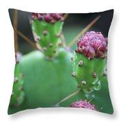 Cactus Dew Throw Pillow