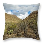 Cactus Everywhere Throw Pillow