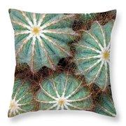 Cactus Family 2 Throw Pillow