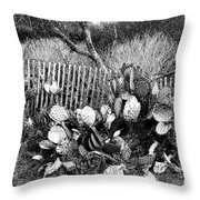 Cactus Fence- Hill Country Texas Throw Pillow